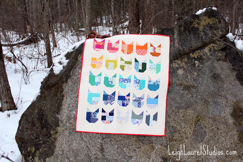 Cat quilt on rock pm