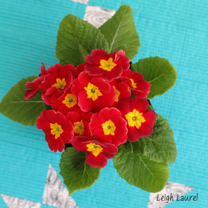 Flower detail on table runner - karin jordan