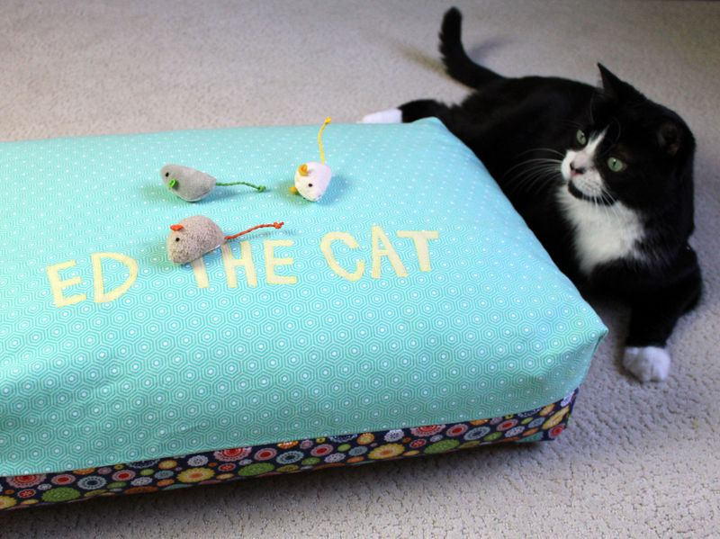 Ed the cat bed 12