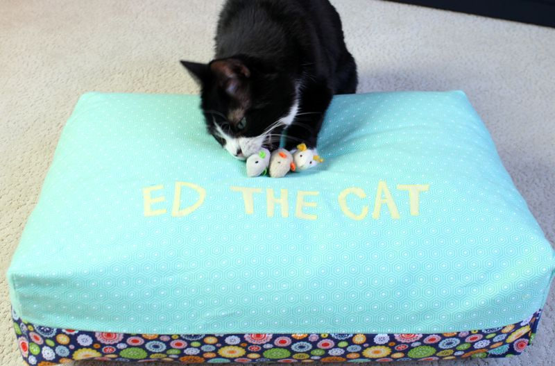 Ed the cat bed 13