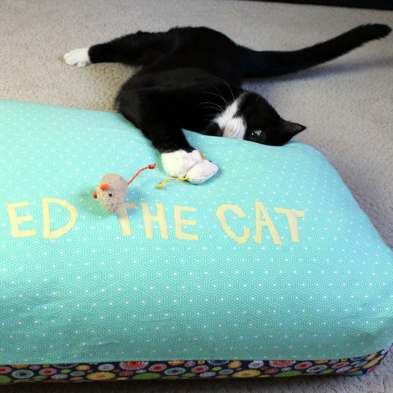 Ed the cat bed 15